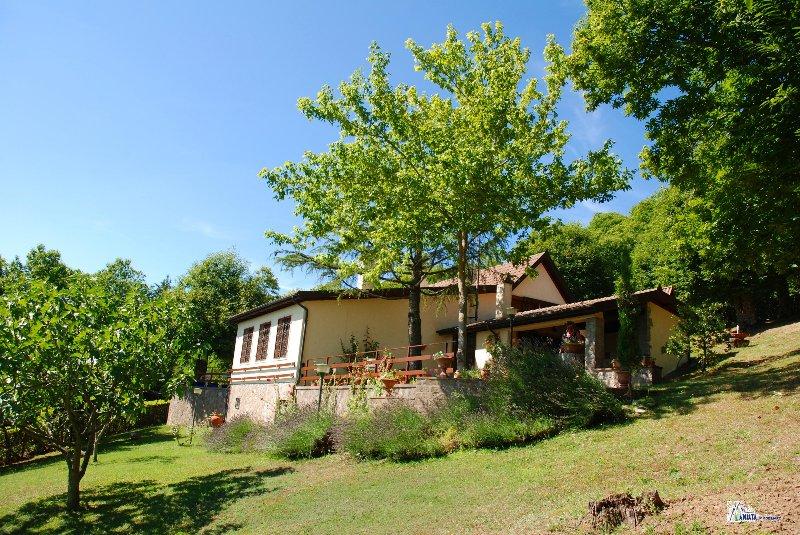 Amiata immobiliare foto rif az 79 case in vendita for Case moderne nei boschi